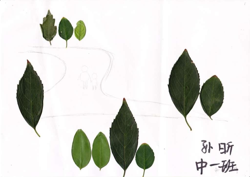 亲子活动-树叶粘贴画